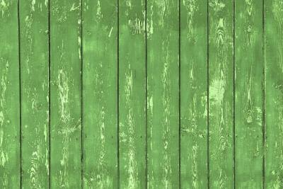 evergreen wooden fence