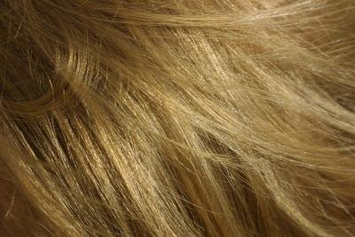 Close up of fine blonde hair.