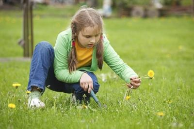 Kids can earn money pulling weeds.