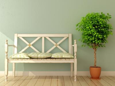 Bench with willows in entryway.