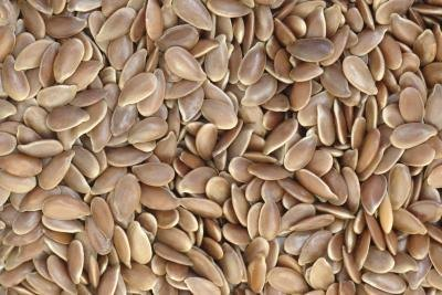 close up of flax seeds