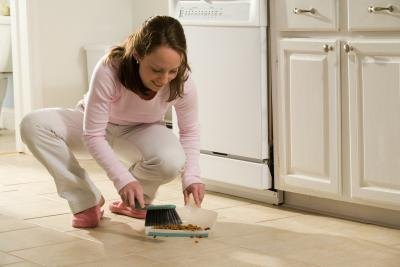Keep your home clean to avoid unwanted pests.