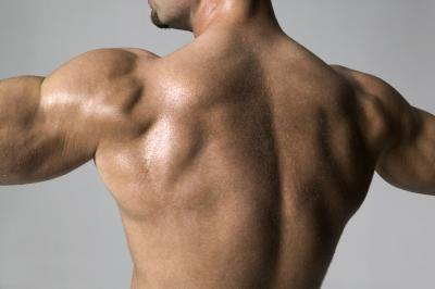 The lats extend from the lower back up to the arms.