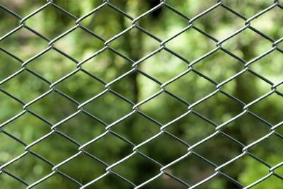 Chain link fence with green yard background