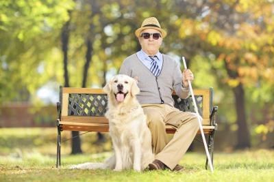 Visually impaired senior with dog and walking stick.