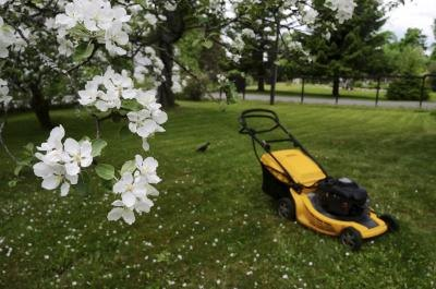 Lawn mower in a vast yard with blooming trees