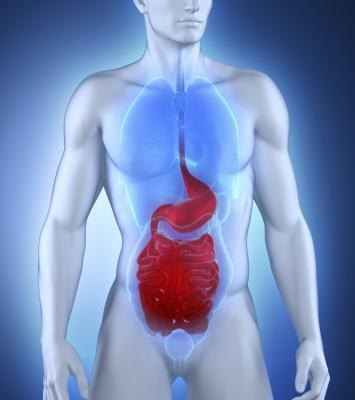 Gastroparesis occurs when the stomach contents do not empty in a timely manner