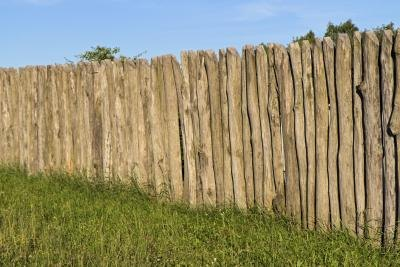 What To Plant Up Against A Wood Fence With Pictures Ehow