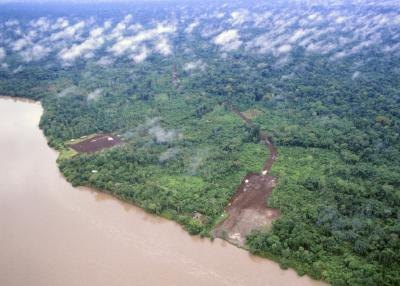 the Amazon Rainforest is one of the world's greatest natural wonders