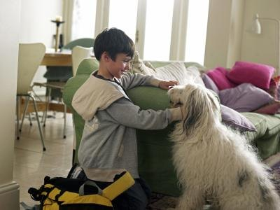 Boy and dog in living room