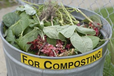 They can be used for composting.