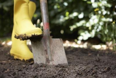 Shovel digs a hole in soil
