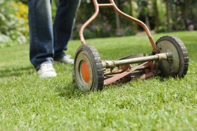 Old-fashioned reel mowers are best for warm-season lawns such as zoysia.