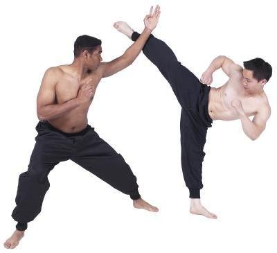 Karate and wing chun are old, well-developed systems of unarmed combat.