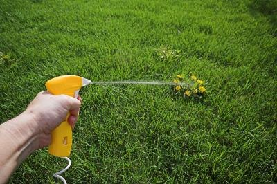 One of the responsibilities of a lawn care technician is to prevent weeds.
