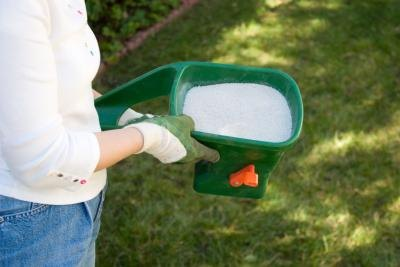 Woman putting pesticide on lawn