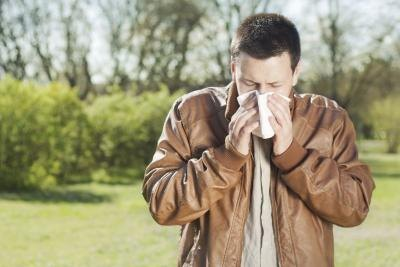 Cottonwood allergies may produce symptoms of hay fever.
