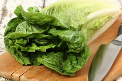 romaine lettuce is a good source of fiber