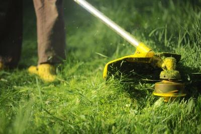 There are many components of an effective lawn care business.