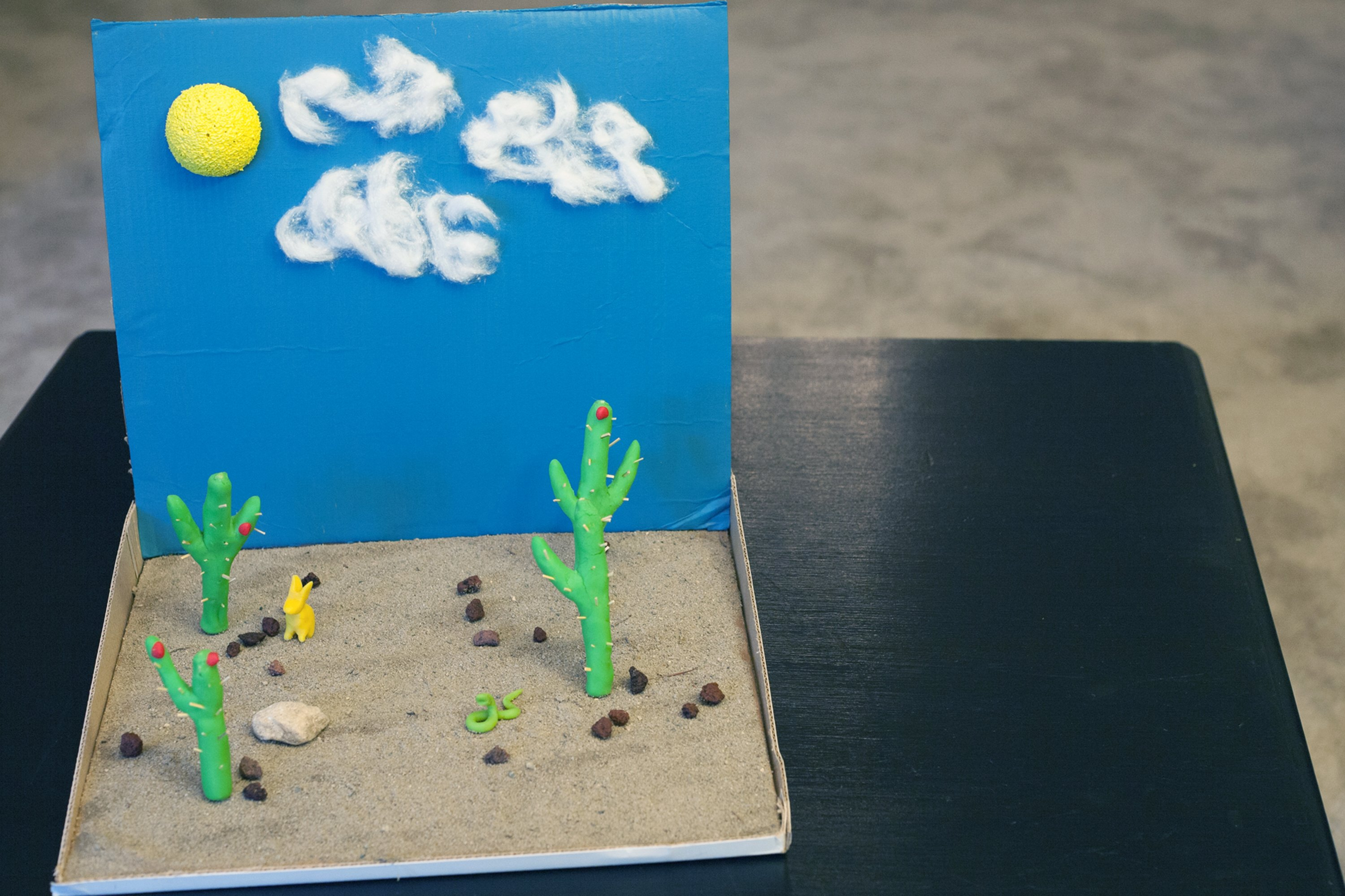30 Shoe Box Craft Ideas: How To Make A Desert Diorama (with Pictures)
