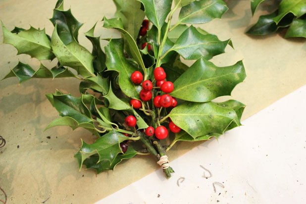 Tie three holly stems into a bunch.