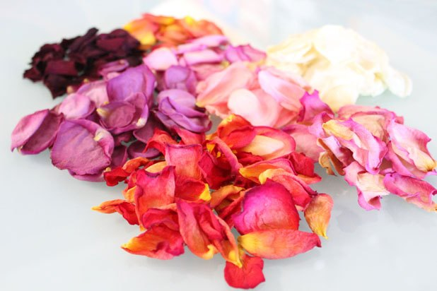 Dry rose petals for potpourri and other home decor projects