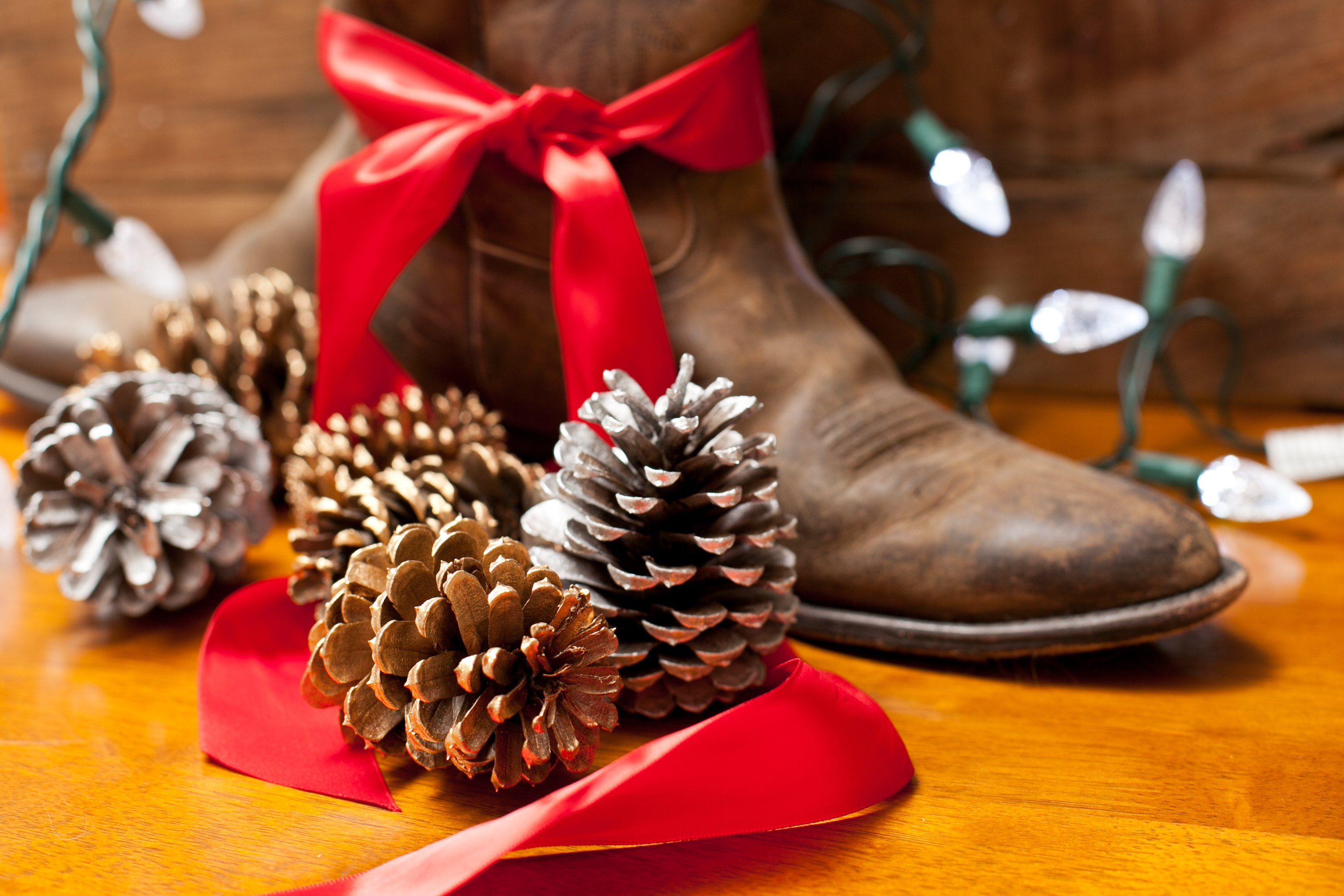 Homemade Cowboy Christmas Decorations (with Pictures) | eHow