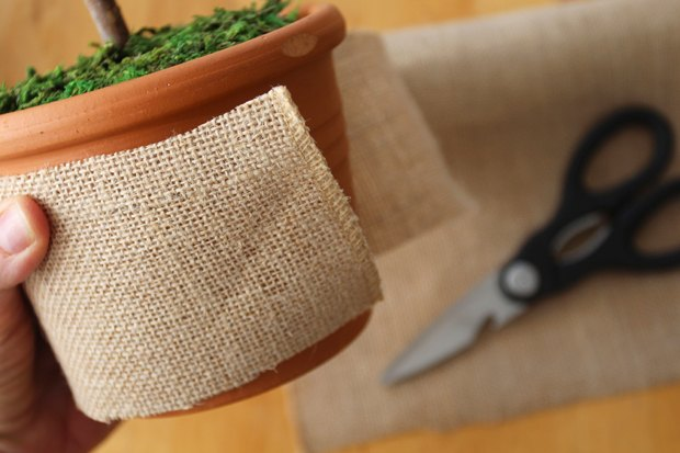 A ribbon of burlap makes a beautiful, textural sleeve for your pot.