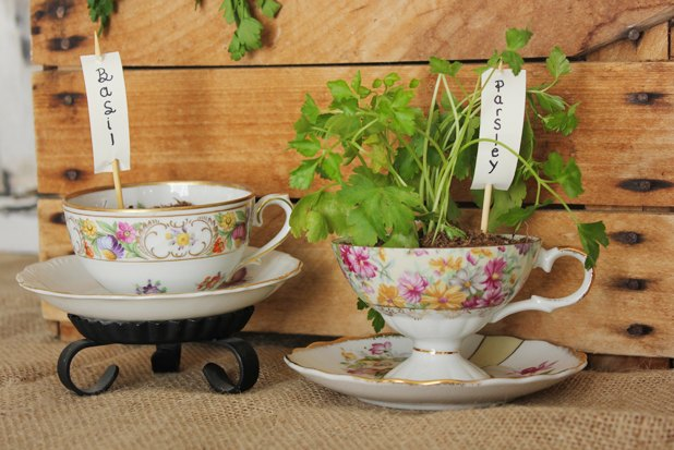 Teacup planters filled with herbs