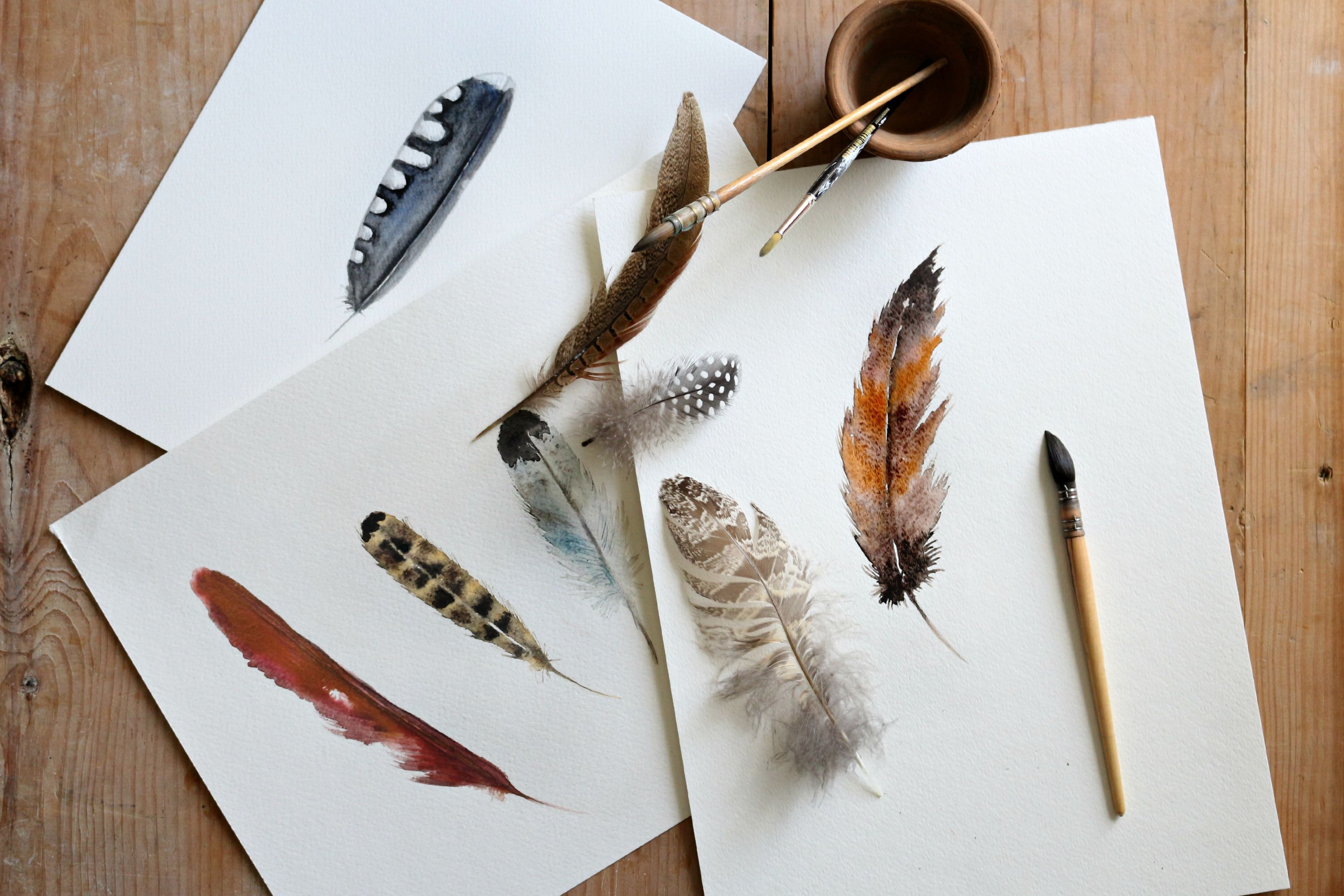 how to do a watercolor painting of bird feathers ehow