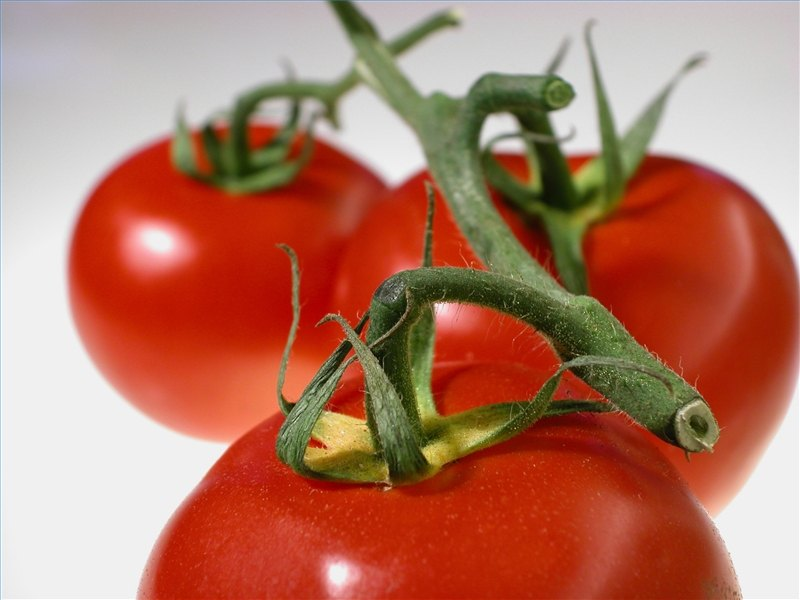 how to know tomato allergy symptoms | ehow, Skeleton