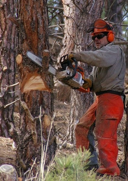 How Does a Chain Saw Work?