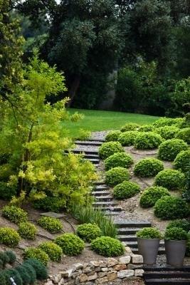 Embrace Gardening Tips
