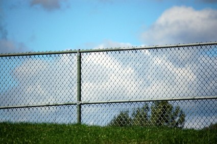 Make a chain link fence beautiful.