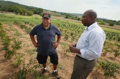 Dept. of Agriculture official and farmer stand in green pepper field