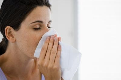 Symptoms of a high IgE from a persistent allergy may resemble a cold.