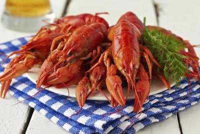 Carefully reheated crawfish retains its unique taste and texture.