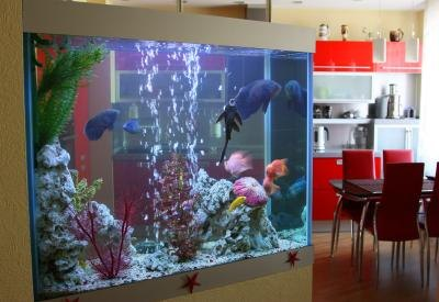 An aquarium functions properly in a contemporary home.