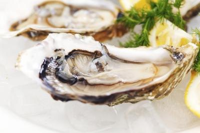 Illness Caused by Eating Oysters