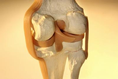 Cartilage is a strong but flexible connective tissue that prevents bone friction in joints.