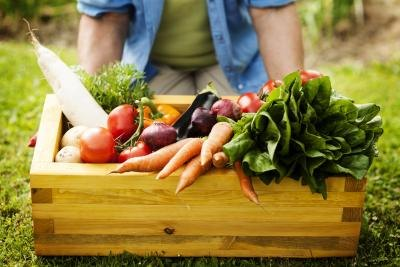 A healthy diet will be important in treating dastroparesis.