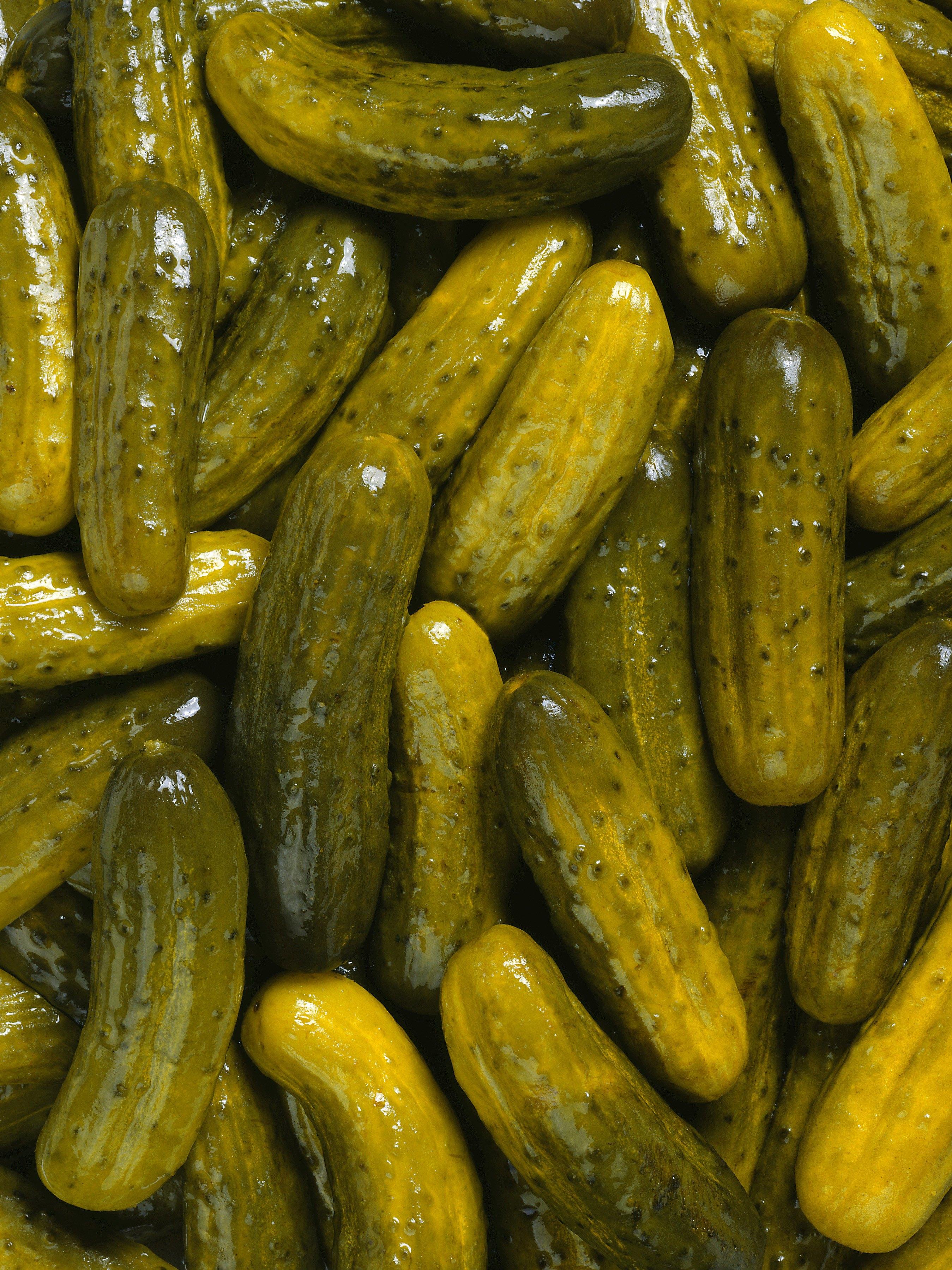 recipe: polish pickles vs kosher [2]