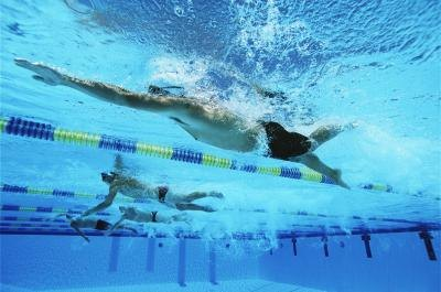 Swimmers doing laps