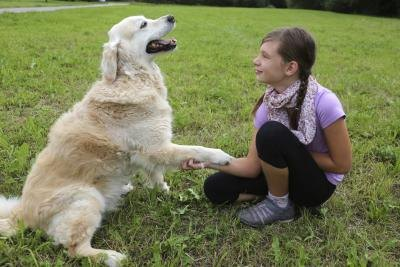 A Girl Works With A Golden Retriever Outside