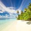 The Elizabeth Islands
