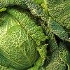Diet Menu Plan for an Underactive Thyroid