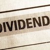 What Is Part of a Company's Profit That Is Distributed to Its Stockholders?