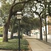 Savannah City Tours