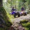 Timberline ATV Trails in Pennsylvania