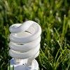 Lightbulbs That Mimic Sunlight